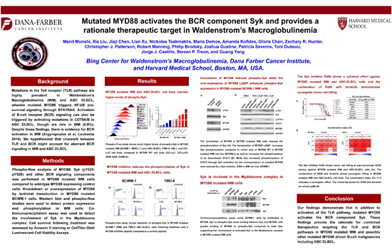 Mutated MYD88 Activates the BCR Component SYK and Provides a Rationale Therapeutic Target in WM