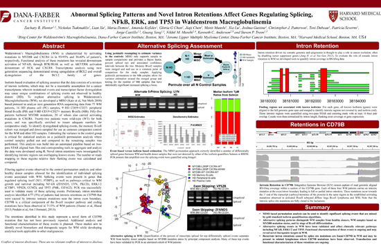 Abnormal Splicing Patterns and Novel Intron Retentions Affect Genes Regulating Splicing, NF-Kb, ERK1/2, and TP53 in WM